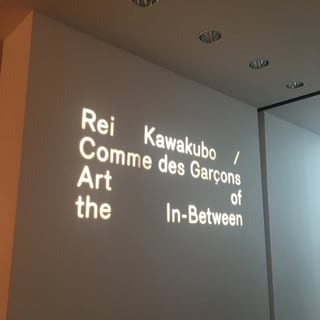 Rei Kawakubo / Comme des Garcons Art of the In-Between