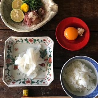 【春レシピ】乗せるだけで危険な旨さ!イカのにんにく卵黄醤油
