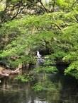 菊池の夏、始まります〜 観光編