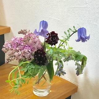 小さな花を、ふだんの器で気軽に飾る 1