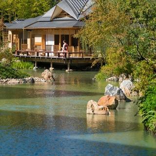 春、視覚も喜ぶ週末京都ステイ