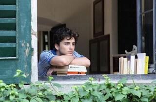少年の欲望を品よく美しく描いた上質な映画『君の名前で僕を呼んで』