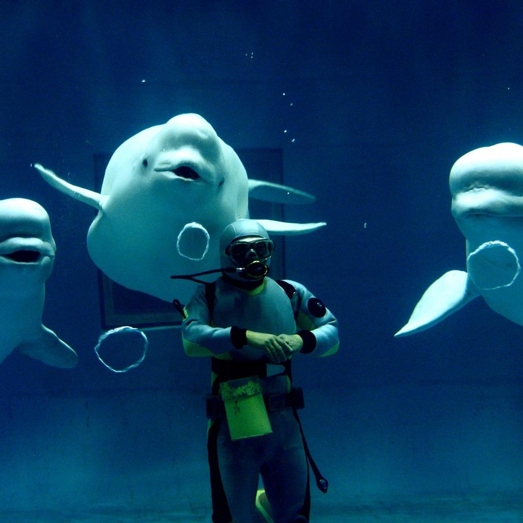 今度の休日に会いに行きたい、水族館のキュートな生き物たち
