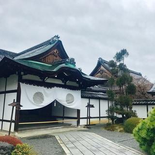 冷たい雨の京都。花楓ちゃんと撮影中です