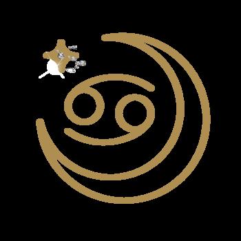 【月星座蟹座・2022年上半期】