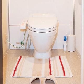 プロ直伝!トイレ掃除、意外と知らない手順と見逃しポイント