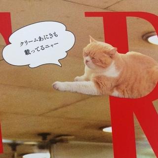 世界が愛する香港スター「クリームあにき」を知っていますか