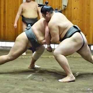 大相撲初場所騒動で考えたい、東京五輪は一体どうする?